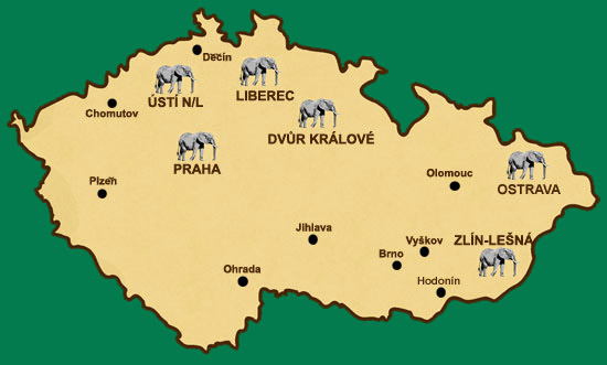Sloni V Zoo Usti Nad Labem